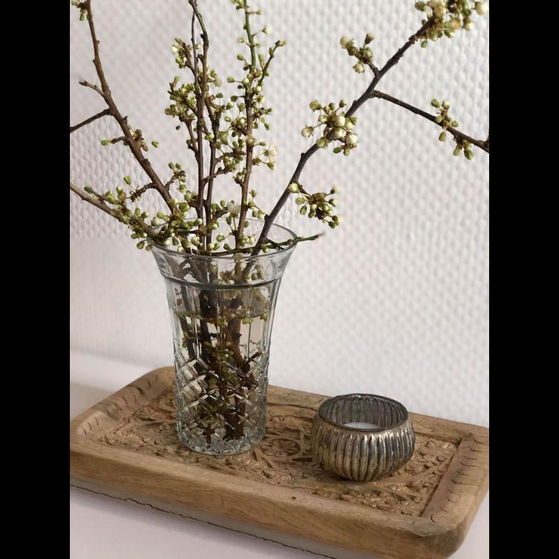 Bakke i mangotræ med mønster