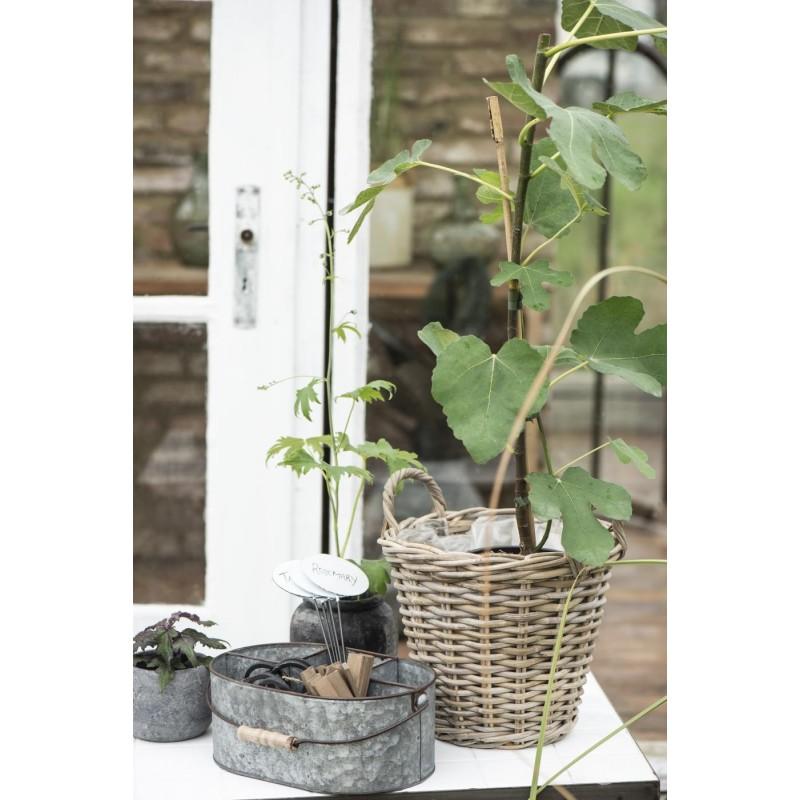 PlantekurviflettetrattanLille-04