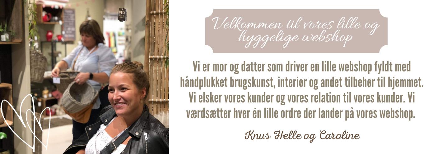 Velkommen_til_hosfrunips.dk